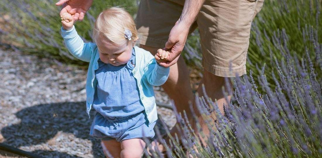 babies begin to walk